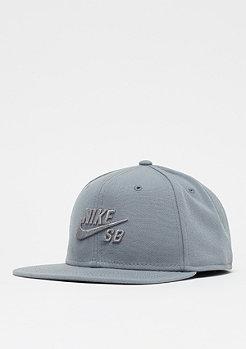 NIKE SB Pro cool grey/cool grey/cool grey