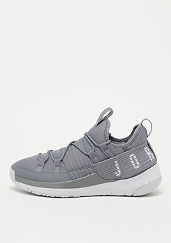 JORDAN Trainer Pro cool grey/pure platinum/pure platinum