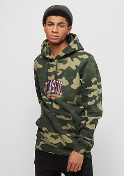 Cayler & Sons BL Worldwide Classic Hoody woodland camo