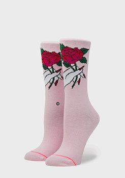 Stance Foundation Rosalinda pink