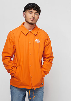 Dickies Summerfield orange énergique