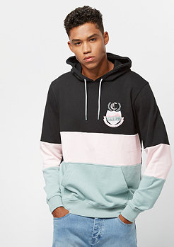 Cayler & Sons CSBL AOT Hoody black/mc