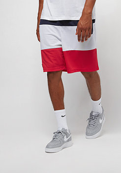 Cayler & Sons C&S WL Statement Meshshorts navy/white/red