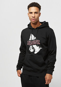 Cayler & Sons C&S WL Trust Wave Hoody black/mc