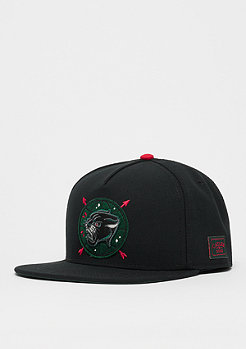 Cayler & Sons WL Rule The World Cap black/mc