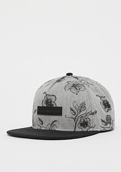 Cayler & Sons CL Vibin Cap grey/black