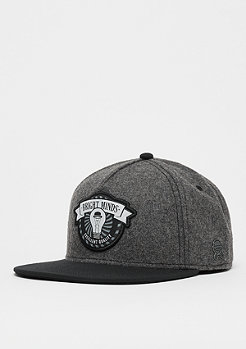 Cayler & Sons CL Bright Minds Cap dark grey/black