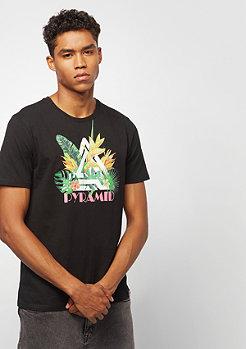 Black Pyramid Tropical black