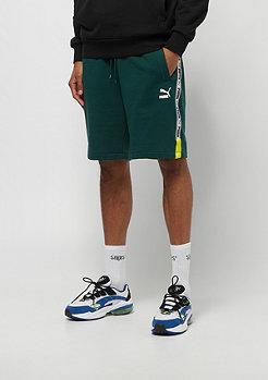 Puma PUMA XTG Shorts ponderosa black