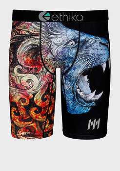 Ethika The Staple Memphis Mayfire