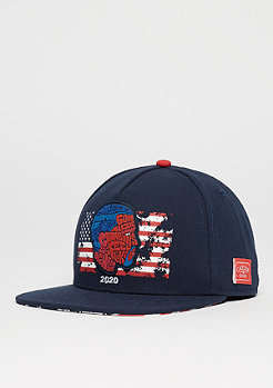 Cayler & Sons WL Cap Life Of navy