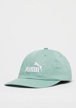 Puma ESS Cap aquifer/white