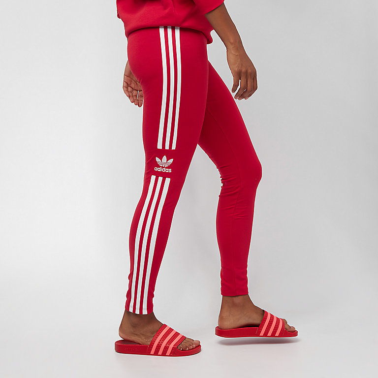 Trefoil Tight scarlet